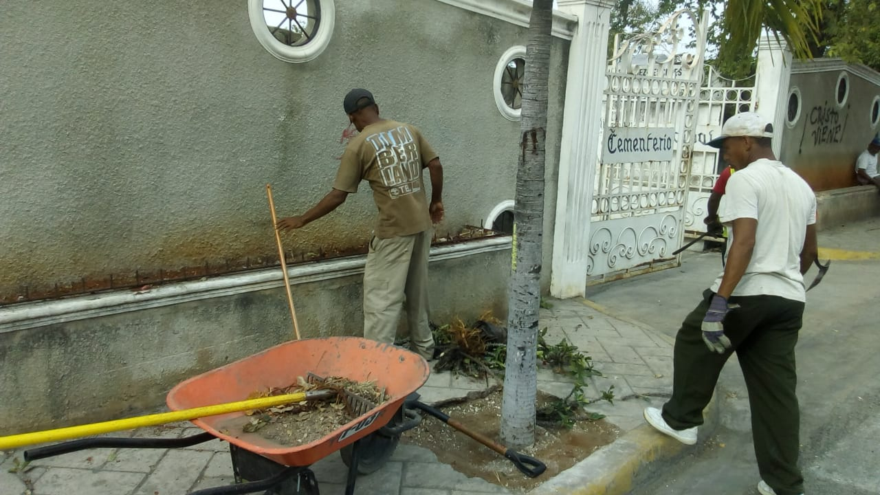 El departamento de parques y plazas del cabildo trabaja en  un amplio y continuo mantenimiento de la ciudad