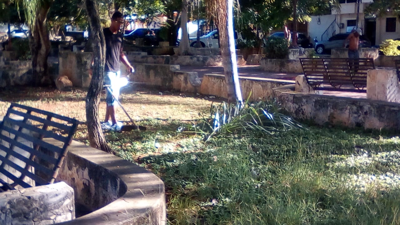 Ayuntamiento de La Romana trabaja en mantenimiento area verde Boulevard